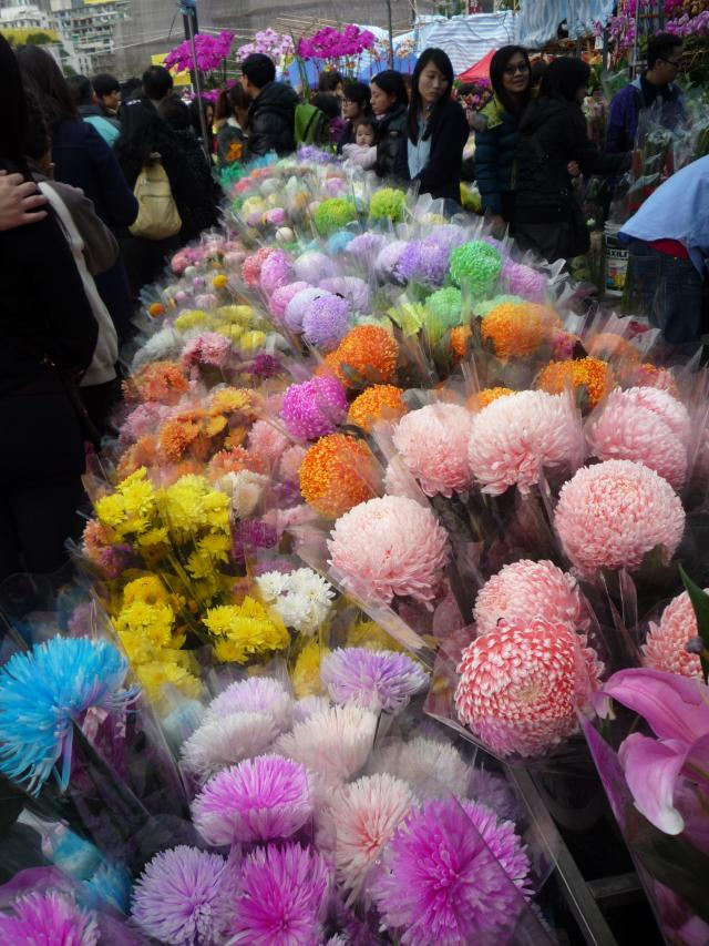 Brightly coloured chrysanthemums