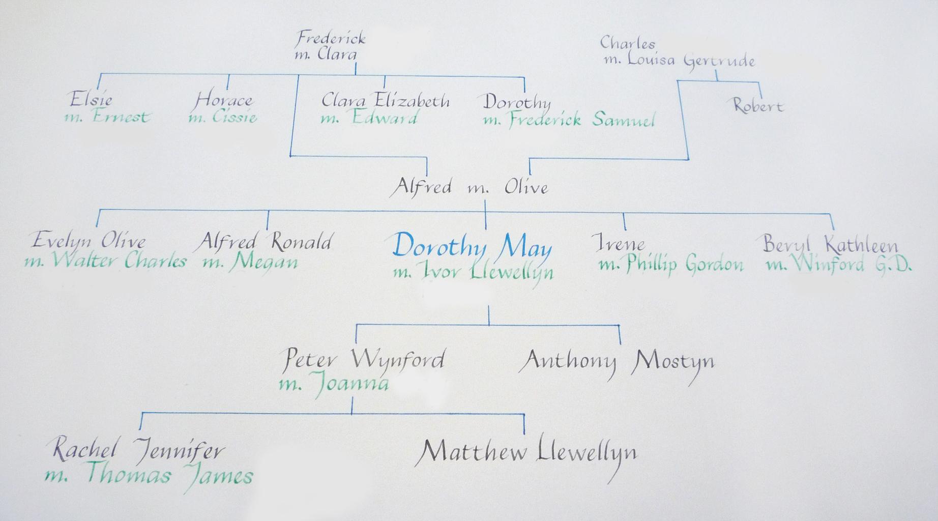 Calligraphy family tree the little koo
