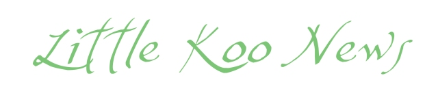 Little Koo Newsletter