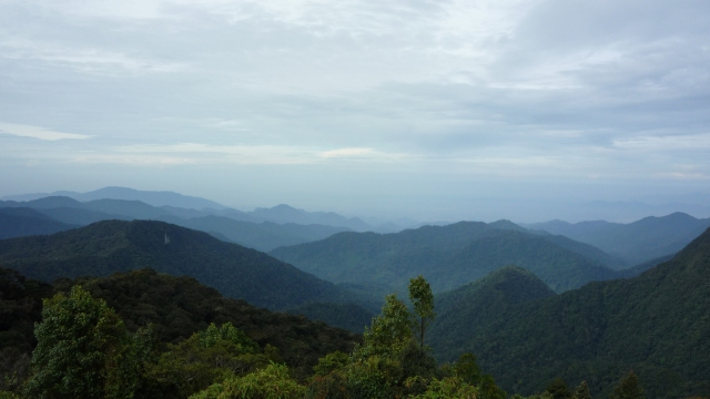 Cameron Highlands hills
