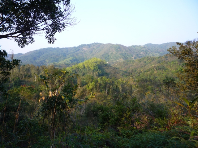 Open countryside in northern New Territories