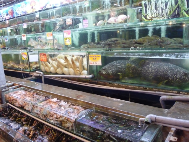 Seafood at Bali Hai Restaurant Georgetown
