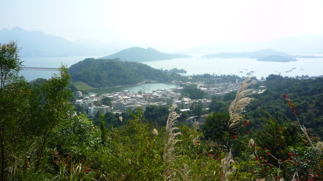 Tai Mei Tuk from Pat Sin Leng nature trail
