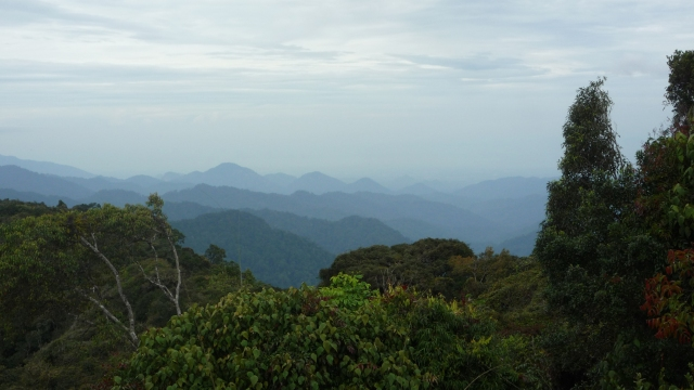 View from Gunung Jasar