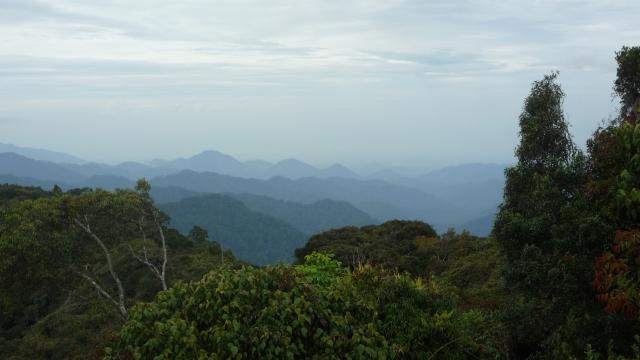 View from Gunung Jasar