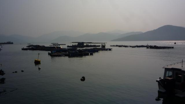 View from Tap Mun