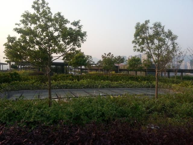 kai_tak_cruise_terminal_park_plants