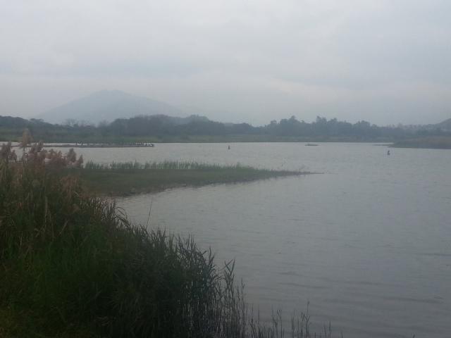 hong_kong_wetland_park_birds