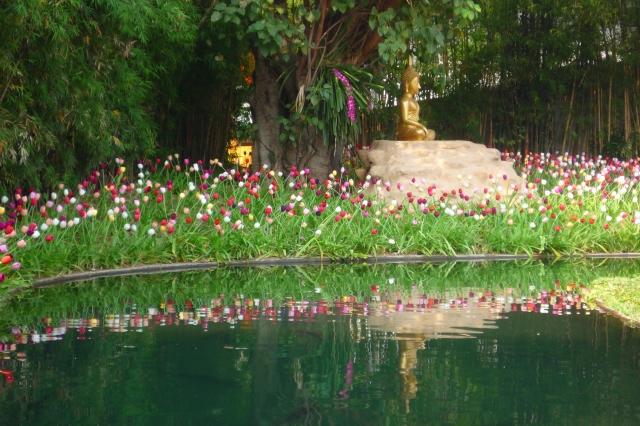 bhuddist_religious_garden_chiang_mai