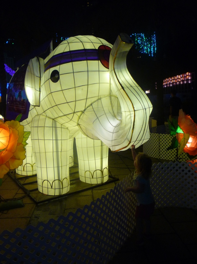 Toddler touching an elephant lantern
