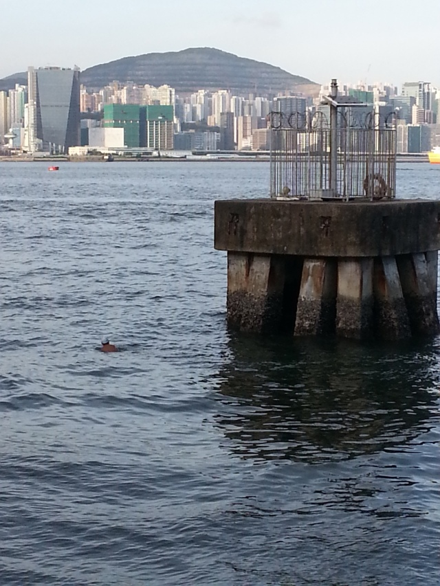 151215 Candid Hong Kong - swimming in victoria harbour