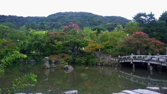 Maruyama Park Kyoto - The Little Koo Blog