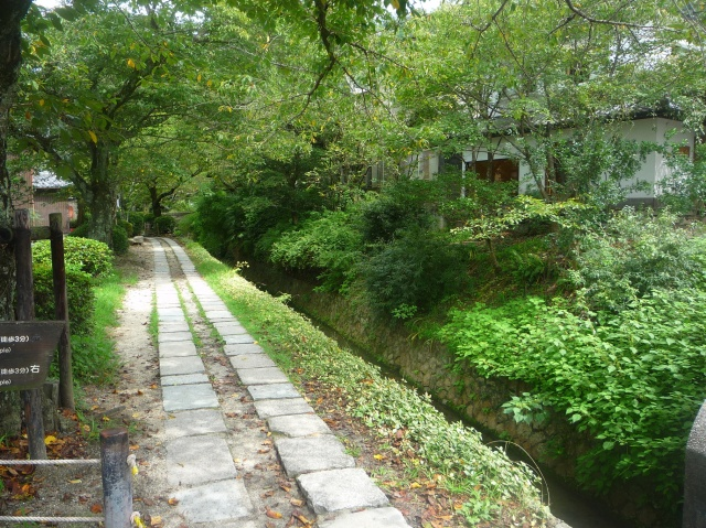 Philosophers Walk Kyoto - The Little Koo Blog