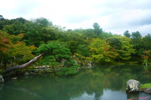 Tenryu-ji Gardens Kyoto - The Little Koo Blog