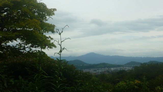 View from Okochi-sanso gardens Kyoto - The Little Koo Blog