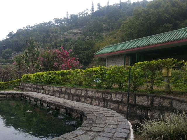 Kadoorie Farm pond