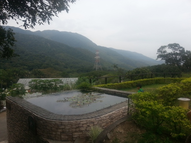 Kadoorie Farm view
